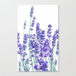 Fresh Lavender #1 #decor #art #society6 Canvas Print
