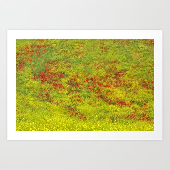 Field of flowers. Rural beauty. Poppies Art Print