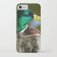 duck iPhone & iPod Cases featuring Duck by jamester42