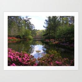 Springtime in Georgia Art Print