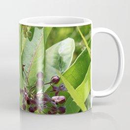 Multi Colored Milkweed Blossoms Coffee Mug