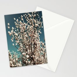 Winter Blossoms Stationery Cards