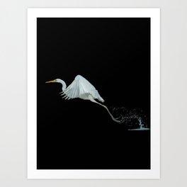 Stork - 104 Art Print