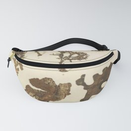 Copper Formations Fanny Pack