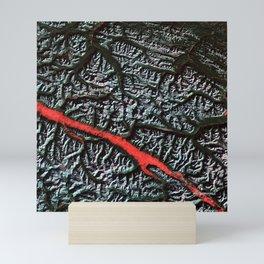 Satellite Image of the Canadian Rockies Mini Art Print