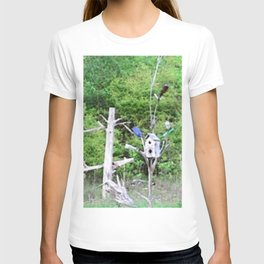 Rural Rustic Knotted Pine Wood Fence Birdhouse Bottle Tree T-shirt