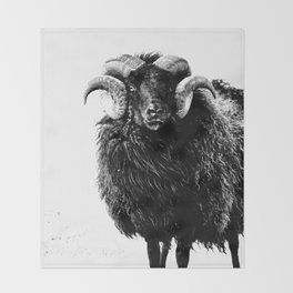 Black Ram Throw Blanket