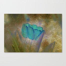Modern Tulips Canvas Print