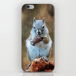 Squirrel with a Pine Cone iPhone Skin