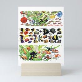 3 kinds of Aquarium fish Mini Art Print