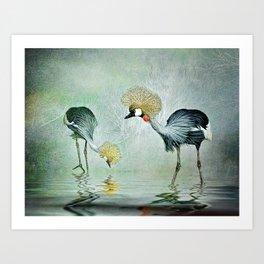 Cranes in the mist Art Print