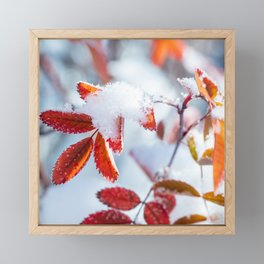 Snowy Fall Leaves // Frozen Fall Colors Framed Mini Art Print