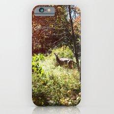 autumn deer. Slim Case iPhone 6s