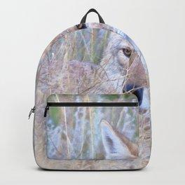 Watercolor Coyote 10, Estes Park, Colorado Backpack