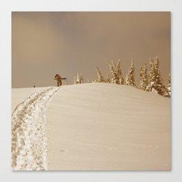 Winter day 5 Canvas Print