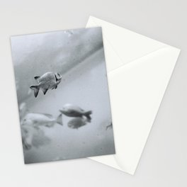 Swimming in Frozen Time Stationery Cards