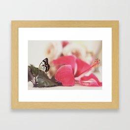 Black Butterfly Pink Flower Framed Art Print