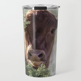 Shy Calf Travel Mug