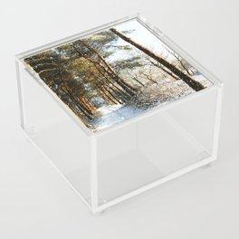 Forest Snow Scene Acrylic Box