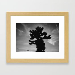 Cholla Cactus Garden XV Framed Art Print
