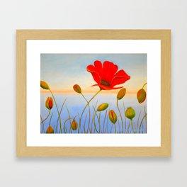 Red Poppy Sunset Framed Art Print