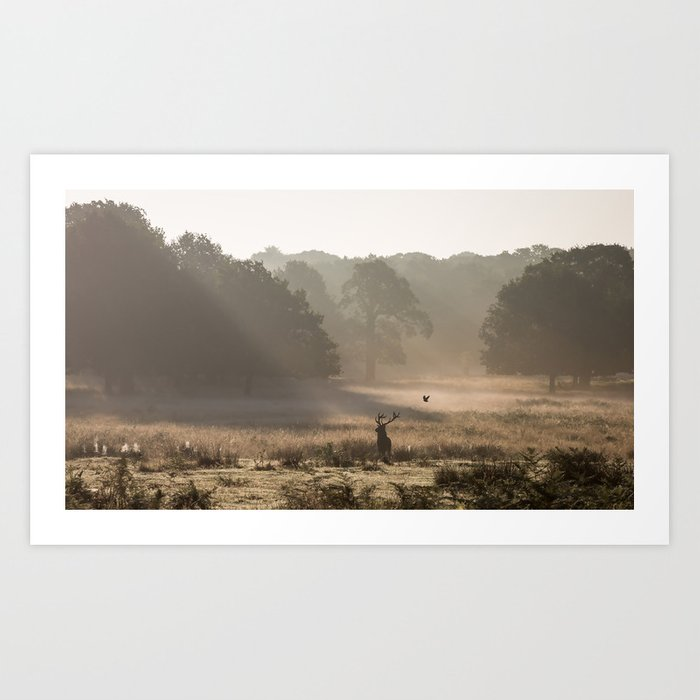 Richmond Park Study 2 Art Print By Sirliraitma Society6