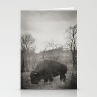 buffalo Stationery Cards featuring Buffalo  by Kaelyn Ryan Photography