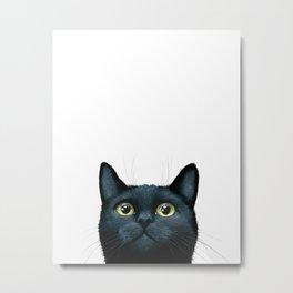 Cat 606 Metal Print