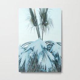 Palm and Snow Metal Print