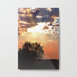 Evening sun in the Dutch countryside Metal Print