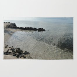 Your own private beach...  Rug