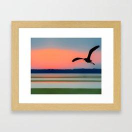 Seagull Sunset Abstract Framed Art Print