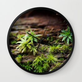 Moss on a Decaying Log Wall Clock