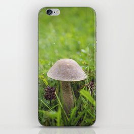 Mushroom in the Morning Dew by Althéa Photo iPhone Skin
