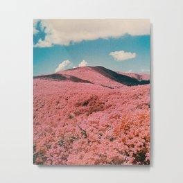 Infrared Shenandoah National Park Metal Print
