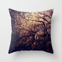 Dappled Light Throw Pillow