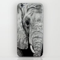 ellie goulding iPhone & iPod Skins featuring Ellie by Kim Maria Morrow