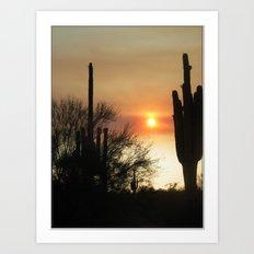 Sagauro Sunset  Art Print