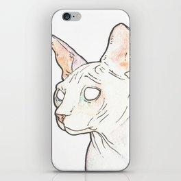 Hairless Cat iPhone Skin