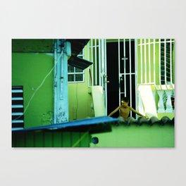 las casas verdes  Canvas Print