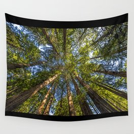 Coastal Redwoods aka Coast Redwood and California Redwood (Sequoia sempervirens) Wall Tapestry