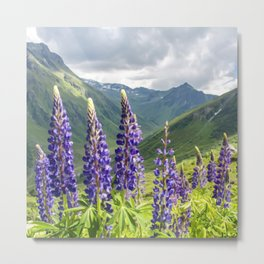 Mountain Lavender | Oil Painting Metal Print