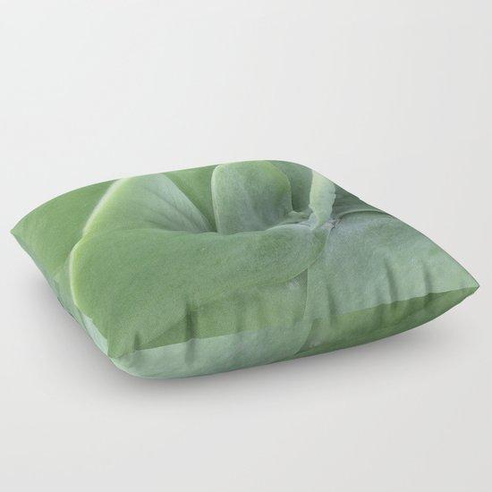 Floor Cushions For Nursery : Succulent Cactus Photography Dreamy Wall Art Botanical Nature Art Nursery Floor Pillow ...