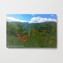 Wild poppies of the Pyrenees mountains Metal Print