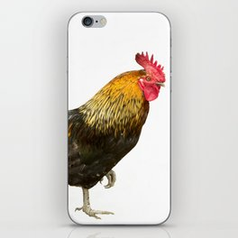 the vain cock iPhone Skin