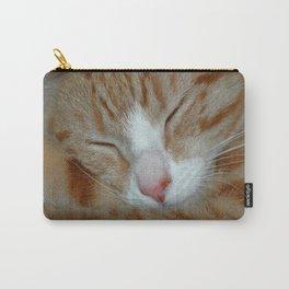 Ginger Kitten Sleeping Carry-All Pouch
