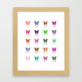 Butterflies 20 Framed Art Print
