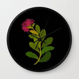 Sedum Telephium Mary Delany Vintage British Floral Flower Paper Collage Black Background Wall Clock