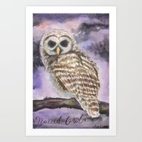 Juvenile Barred Owl Art Print