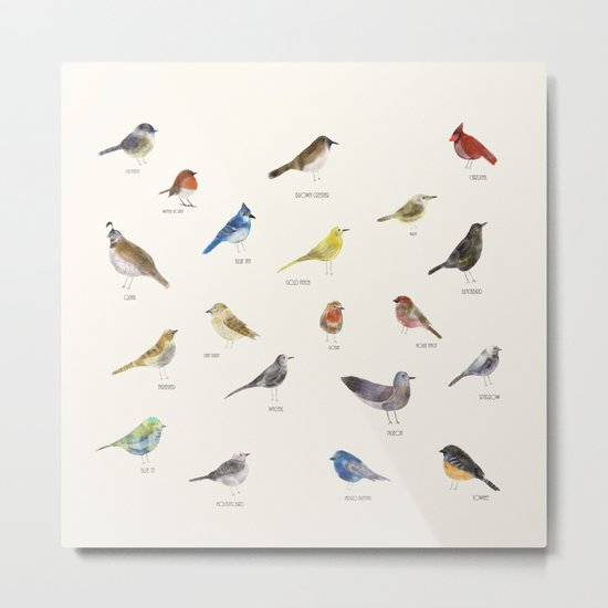 little nature birds Metal Print